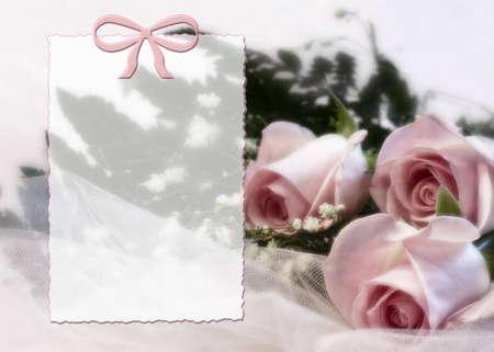 繊細な柔らかいピンクのバラとメッセージのための透明な領域