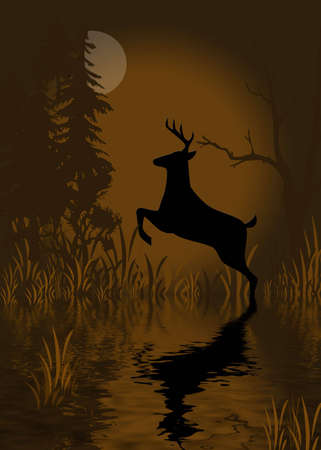 Deer with reflections in water at night with full moon Stock Photo