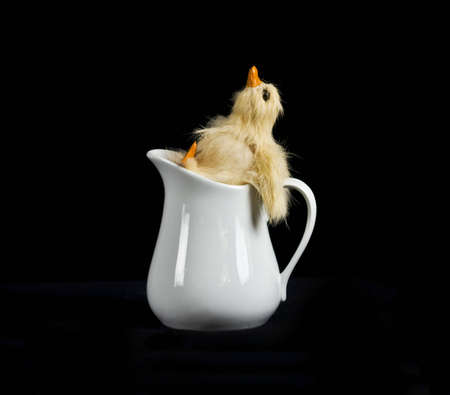 Single baby duck kicking back in creamer