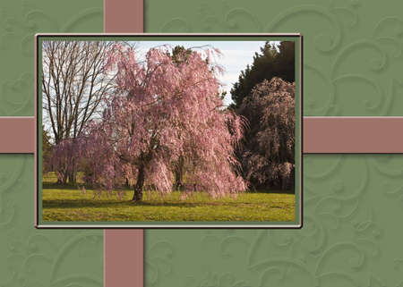 Background print showcasing weeping willow tree with textured sage and mauve colors