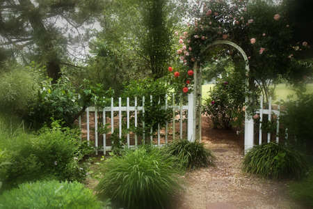 Dreamy Garden with picket fence and trellis with roses photo