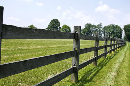 A split-rail wooden fence on a ranch with smll yellow country flowers nestled up to it in places