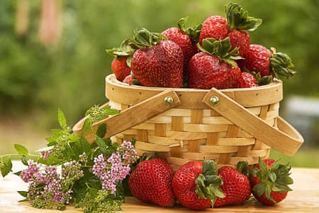 Strawberries in a country basket outdoors
