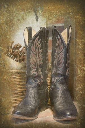 Cowboy Boots Illustration illustration