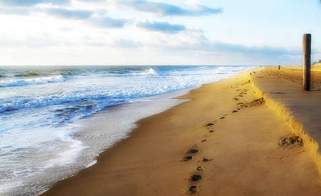 footprints sand: Oceanshoreline with footprints in the sand