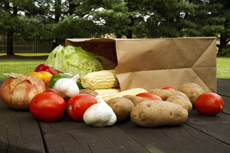 Grocery bag laying on picnic table with vegetables
