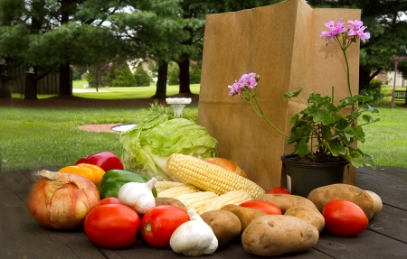 Assortment of vegetables with shopping bag and plant on outside picnic table