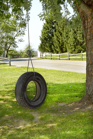 Tire Swing hanging off tree