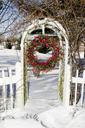 Cranberry wreath hanging in Trellis after snow storm Imagens