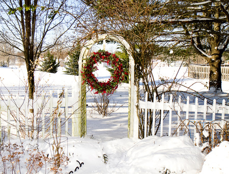 Trellis with Cranberry Wreath hanging after snow storm