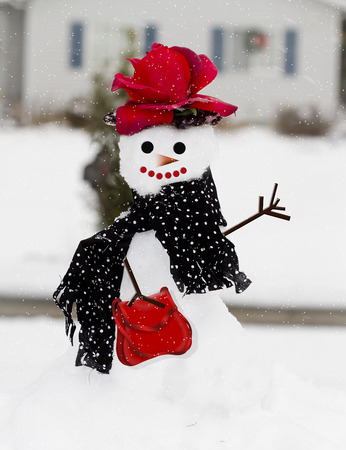 SnowLady in snowing scene outdoors Imagens