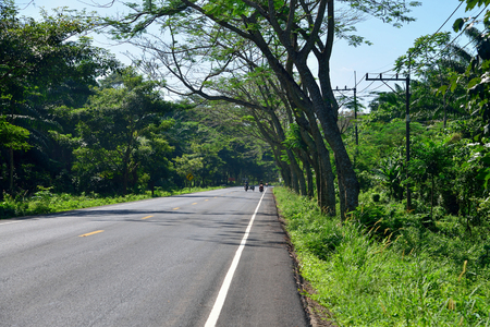 wilds: Road along jungle forest in Thailand, Krabi