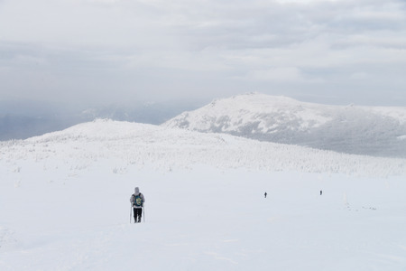 ural: Group of hikers in winter mountains, Russia, Ural