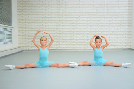 Little girls dancing ballet in studio. Young ballerinas gracefully posing at dance school, copy space