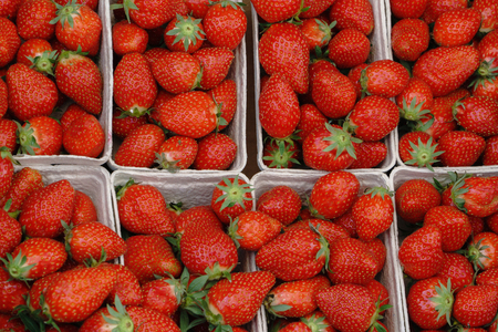 Baskets of fresh delicious Strawberries in store, closeup.