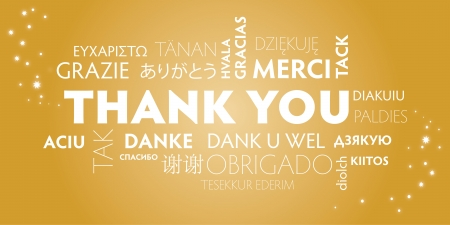 gratulation: Thank You Word Cloud in different languages