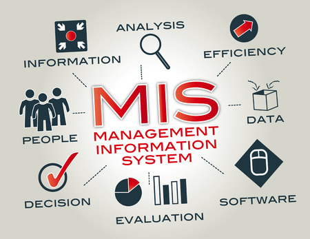 A management information system provides information that organizations require to manage themselves efficiently and effectively Illustration