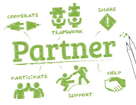 Partner. Diagramm mit Keywords und Symbole Standard-Bild - 43376574