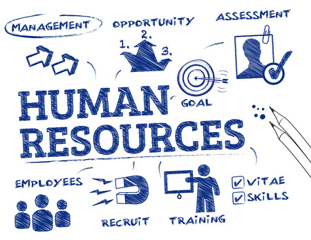 employee development: Human resources. Chart with keywords and icons Illustration
