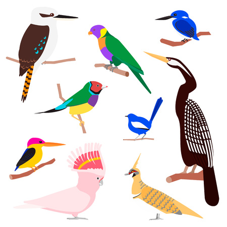 Vector set of exotic birds Illustration
