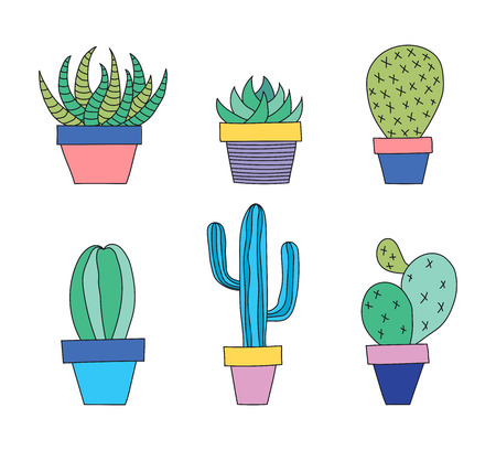 Hand drawn set of succulent and cactus plants in a pot. Vector illustration. Çizim