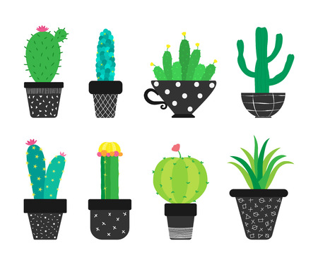 Set of cartoon cacti in the pots. Vector illustration.