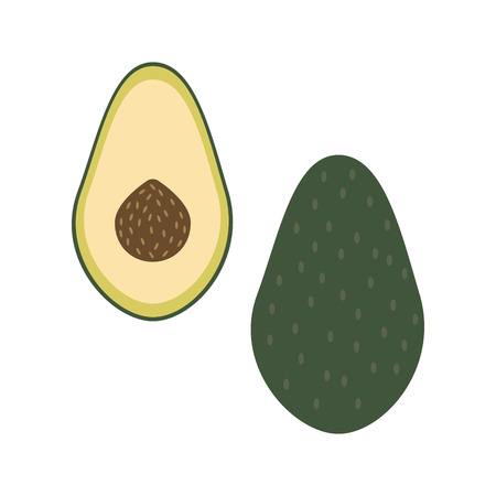 Whole avocado and a half. Raw fresh food vector illustration.