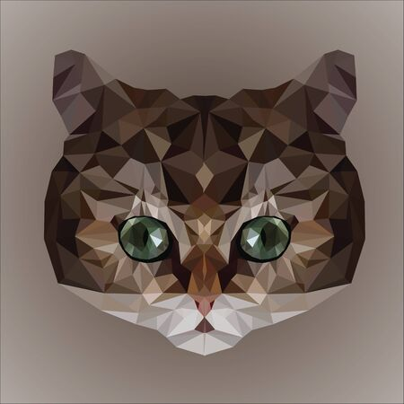 Low poly design. Cat face illustration.