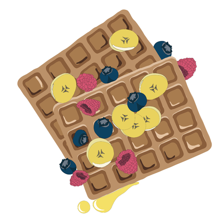 caramel sauce: Caramel sauce flowing over a waffle with blueberyy, banana and raspberry. Hand drawn healthy snack illustration