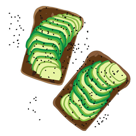 aguacate: aguacate s�ndwich detallado sobre fondo blanco. Ilustraci�n de pan tostado vegetariano para el desayuno o el almuerzo.