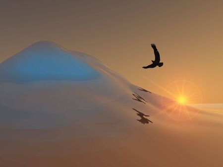 Eagle over Ice Hill