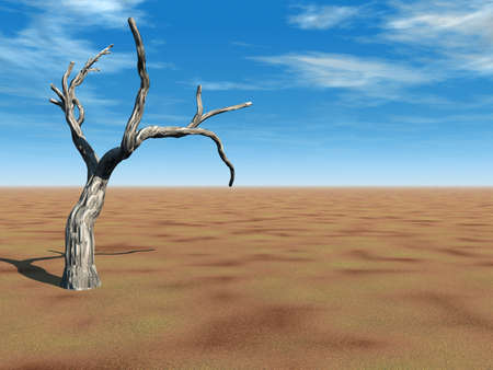 sustain: Tree on Desert Stock Photo