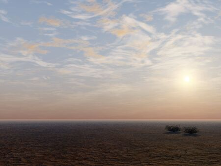 A dry flat cracked earth desert background.
