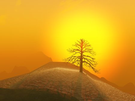 hill distant: A lone winter tree against a foggy sunrise. Stock Photo