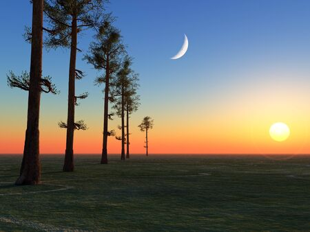 A line of tall trees lined up into the horizon under the moon and sun.