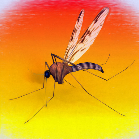 One mosquito on evening background, digital art Illustration.