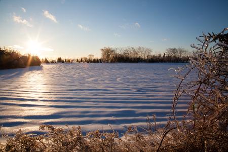 얼음 폭풍 후에 나무와 관목은이 설원뿐만 아니라 얼음 층으로 덮여 있습니다.