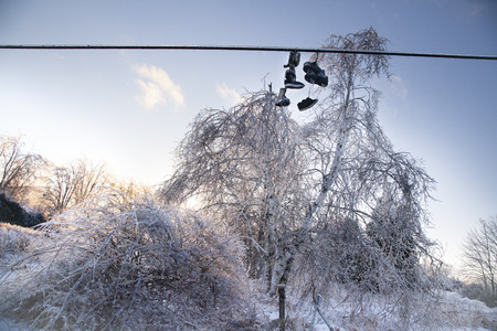 After an ice storm, trees and shoes on a line are covered in ice which shows a sunlit glow. The shoes and boots have icicles formed. Stock Photo