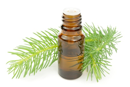tincture: pine essence Stock Photo