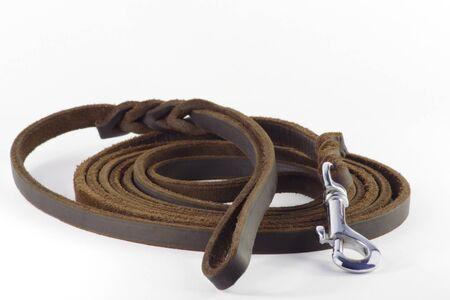 dog on leash: Dog leash