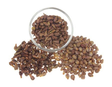 grape seeds Stock Photo