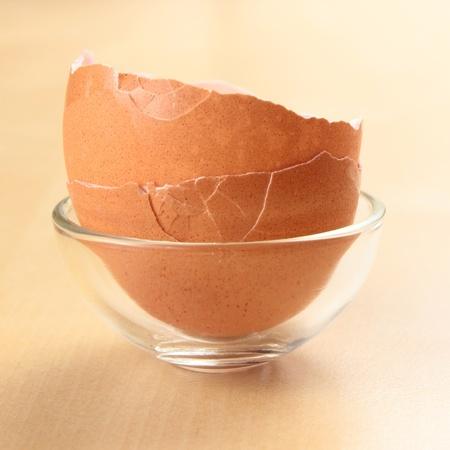tojáshéj: üres tojáshéj
