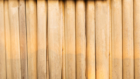 bamboo texture: Bamboo texture and background