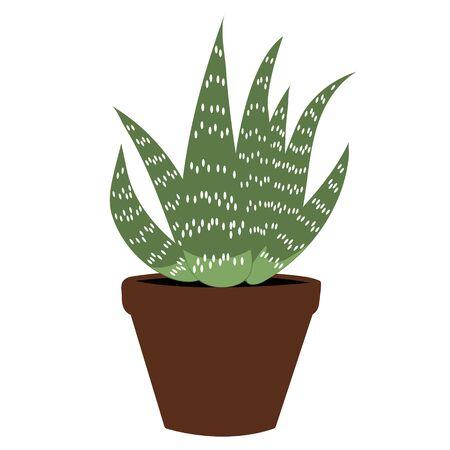 Aloe vera flat. Isolated stock vector illustration