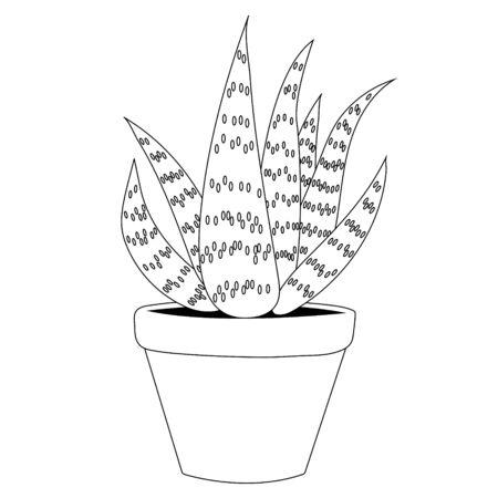 Aloe vera outline. Isolated stock vector illustration