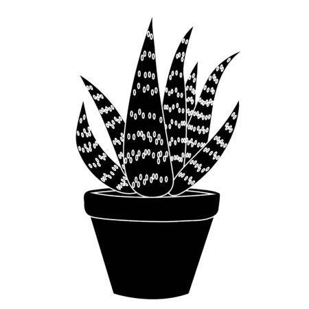 Aloe vera simple. Isolated stock vector illustration