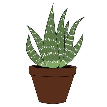 Aloe vera cartoon. Isolated stock vector illustration Illustration