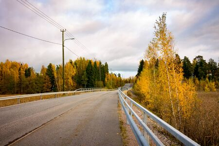 A tarmac road surrounded by trees in autumn colors Imagens