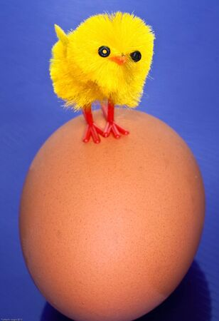 Toy yellow chick on an egg
