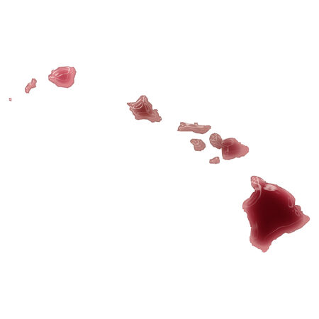 Pool of blood (or wine) that formed the shape of Hawaii. (series) photo